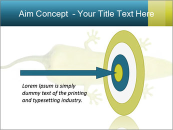0000075077 PowerPoint Template - Slide 83