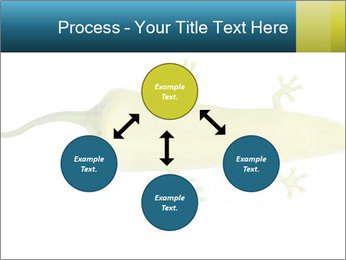 0000075077 PowerPoint Template - Slide 91