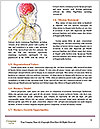 0000075080 Word Template - Page 4