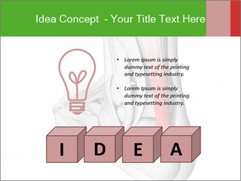 0000075082 PowerPoint Template - Slide 80