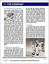 0000075092 Word Template - Page 3