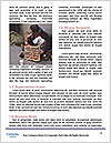 0000075096 Word Template - Page 4