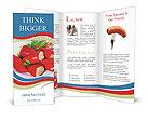 0000075103 Brochure Templates