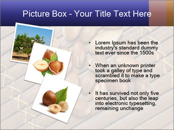 0000075108 PowerPoint Template - Slide 17