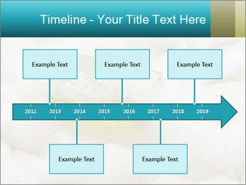 0000075109 PowerPoint Templates - Slide 28
