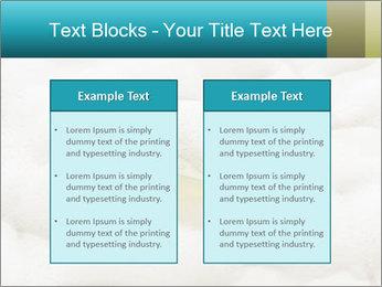 0000075109 PowerPoint Templates - Slide 57