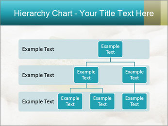 0000075109 PowerPoint Templates - Slide 67