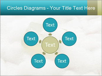 0000075109 PowerPoint Templates - Slide 78