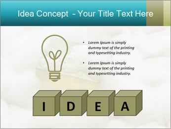 0000075109 PowerPoint Templates - Slide 80