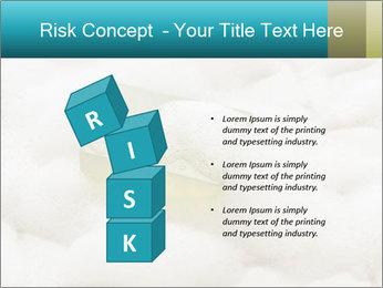 0000075109 PowerPoint Templates - Slide 81