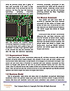 0000075121 Word Templates - Page 4