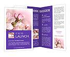 0000075126 Brochure Templates