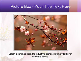 0000075126 PowerPoint Template - Slide 15