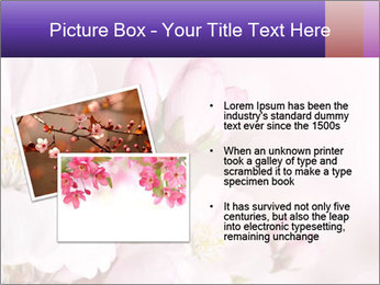 0000075126 PowerPoint Template - Slide 20