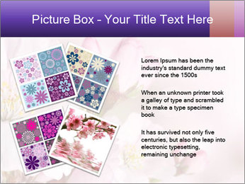0000075126 PowerPoint Template - Slide 23