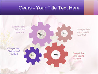 0000075126 PowerPoint Template - Slide 47