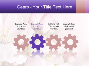 0000075126 PowerPoint Template - Slide 48