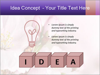 0000075126 PowerPoint Template - Slide 80