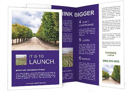 0000075127 Brochure Template