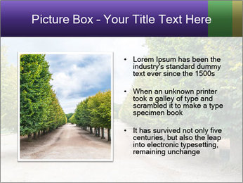 0000075127 PowerPoint Templates - Slide 13