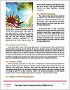 0000075128 Word Template - Page 4