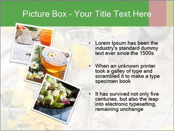 0000075131 PowerPoint Templates - Slide 17