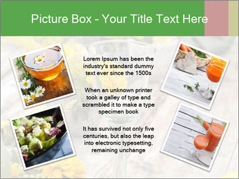0000075131 PowerPoint Templates - Slide 24