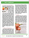 0000075131 Word Template - Page 3