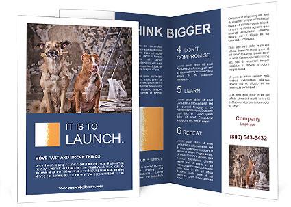 0000075135 Brochure Template