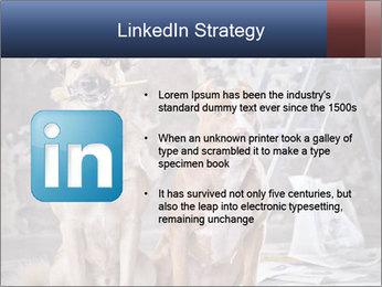 0000075135 PowerPoint Templates - Slide 12