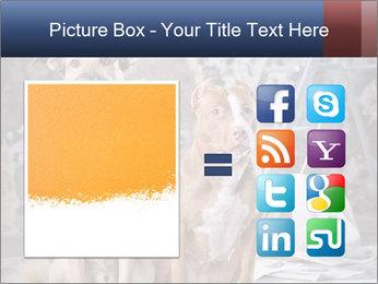 0000075135 PowerPoint Templates - Slide 21