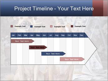0000075135 PowerPoint Templates - Slide 25