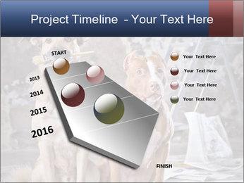 0000075135 PowerPoint Templates - Slide 26