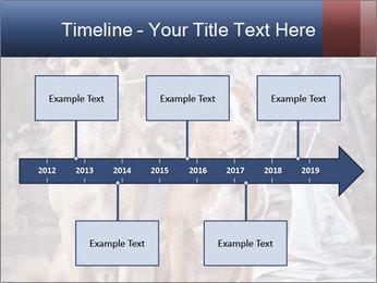 0000075135 PowerPoint Templates - Slide 28