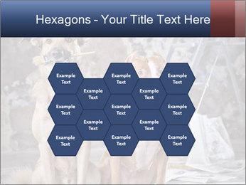 0000075135 PowerPoint Templates - Slide 44