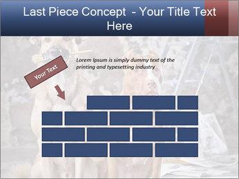 0000075135 PowerPoint Templates - Slide 46
