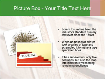 0000075139 PowerPoint Templates - Slide 20