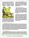 0000075139 Word Template - Page 4