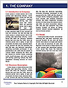 0000075142 Word Template - Page 3