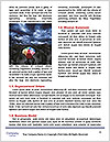 0000075142 Word Template - Page 4