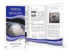 0000075150 Brochure Template