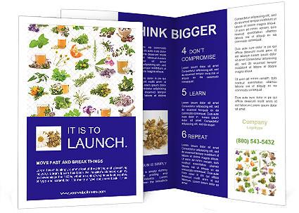 0000075154 Brochure Template
