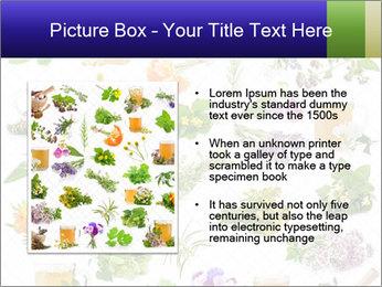 0000075154 PowerPoint Templates - Slide 13