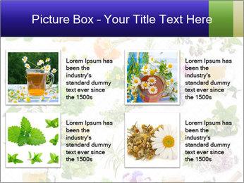0000075154 PowerPoint Templates - Slide 14