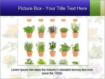 0000075154 PowerPoint Templates - Slide 16