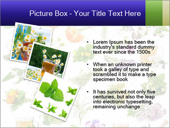 0000075154 PowerPoint Templates - Slide 17