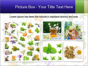 0000075154 PowerPoint Templates - Slide 19