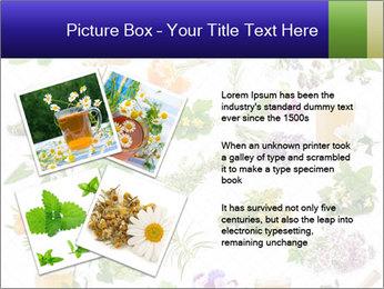 0000075154 PowerPoint Templates - Slide 23
