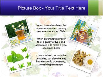 0000075154 PowerPoint Templates - Slide 24