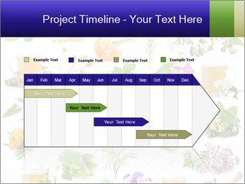 0000075154 PowerPoint Templates - Slide 25